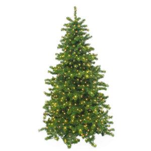 Weihnachtsbaum mit Weihnachtsbeleuchtung zum Mieten