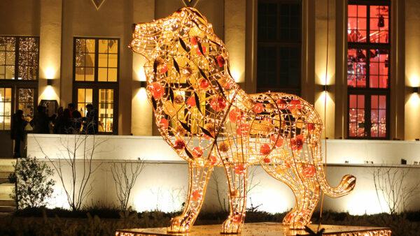 beleuchteter Löw als Weihnachtsdeko
